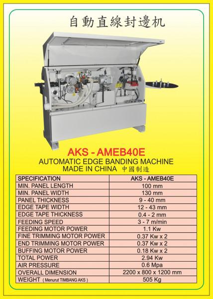 AKS - AMEB40E