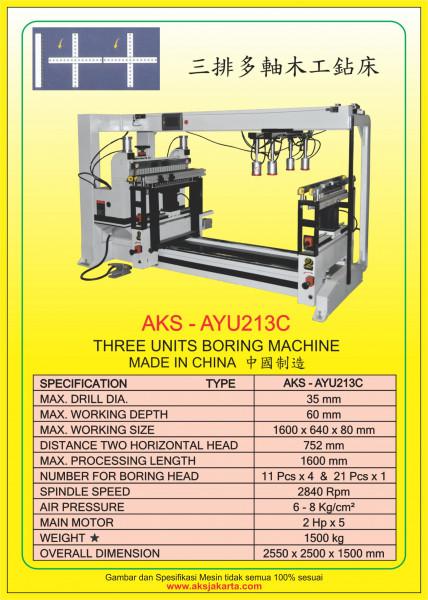 AKS - AYU213C