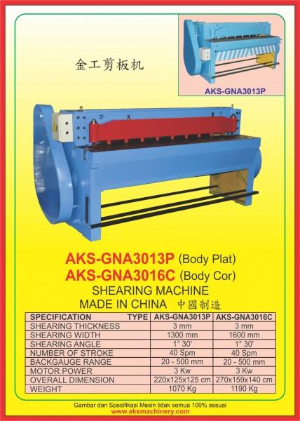 AKS - GNA3013P