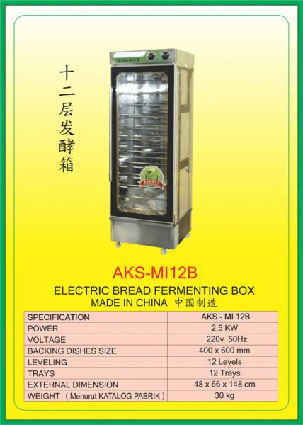 AKS - MI12B