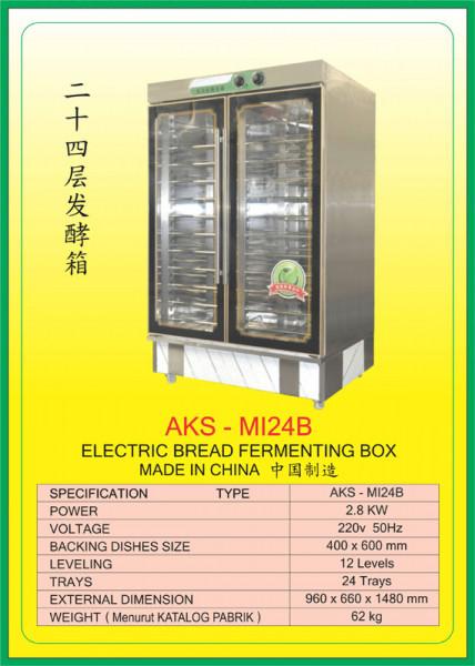 AKS - MI24B