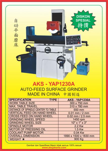 AKS - YAP1230A